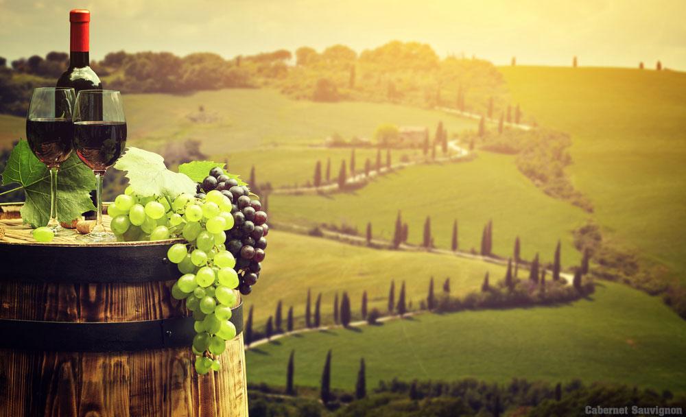 Cabernet Sauvignon ไวน์แดงชั้นดียอดนิยม